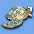 Mosaikfliesen- Serie Pools - Turtle