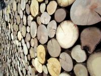 Holzpaneele - FOR-REST - Roundsticks Mini