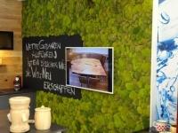 Mooswand - Kugelmoos - Küche