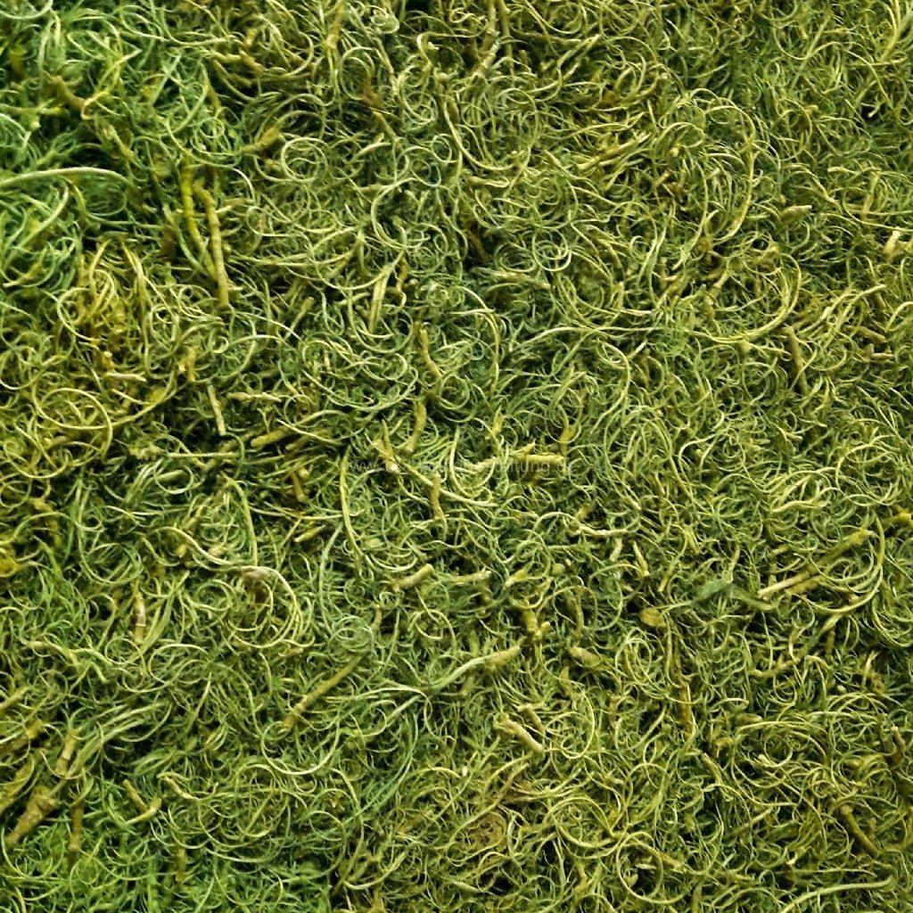 Individuelle Mooswände oder Moosbilder mit Curly Moos - Farbe Frühlingsgrün