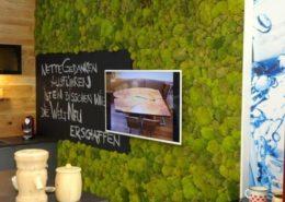 Hügelmoos als Wandverkleidung im Küchencenter