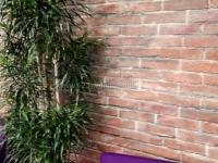 wandgestaltung-ziegelstein-optik-venezia-ladenbau-5
