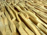 Holzpaneele - Woody-Panels - Cuts Oak