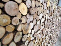 Holzpaneele von FOR-REST - Roundsticks Mini