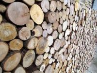 Holzpaneele von FOR-REST - Roundsticks Mini
