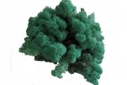 islandmoos-pacific-gruen-3