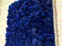 moosbilder-alu-islandmoos-koenigsblau-5050-1
