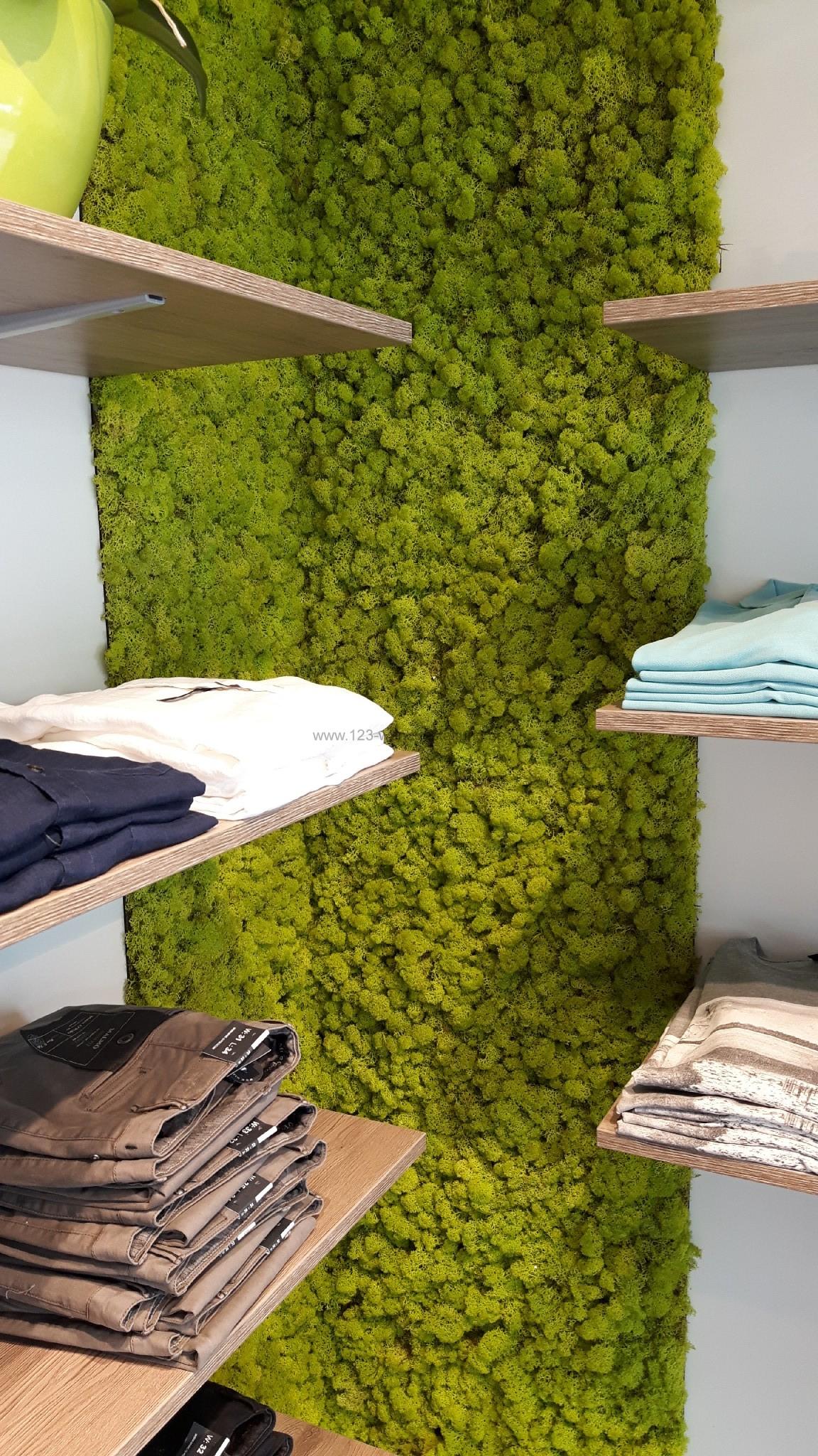 wandgestaltung mit moos archive der partner f r kreative wandgestaltung und fassadenverkleidung. Black Bedroom Furniture Sets. Home Design Ideas