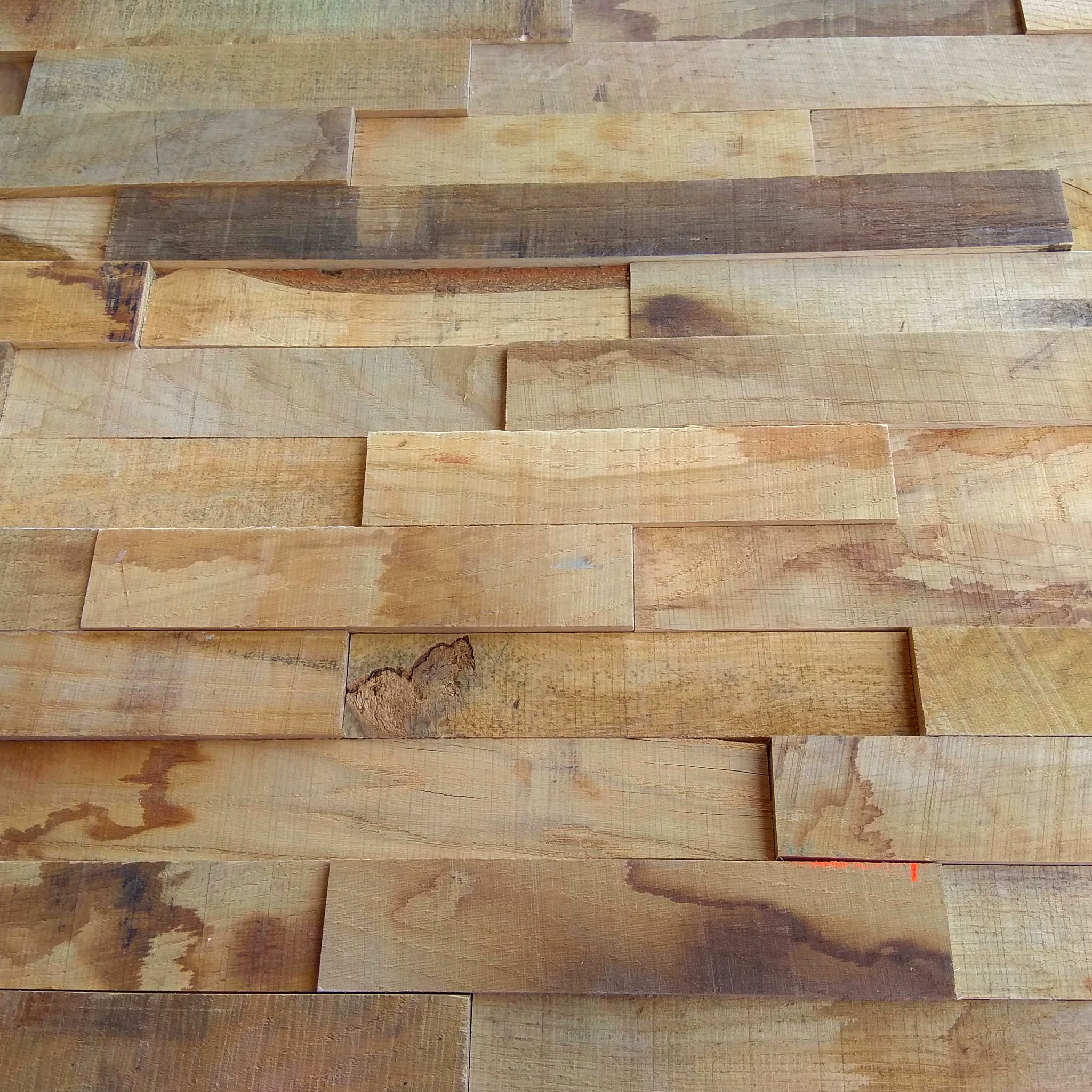Holzpaneele Harmony Natur Kollektion Basic