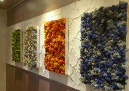 Moosbilder - Elements - aus Islandmoos in verschiedenen Farben