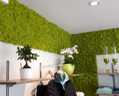Mooswand Islandmoos Frühlingsgrün - Bekleidungsgeschäft